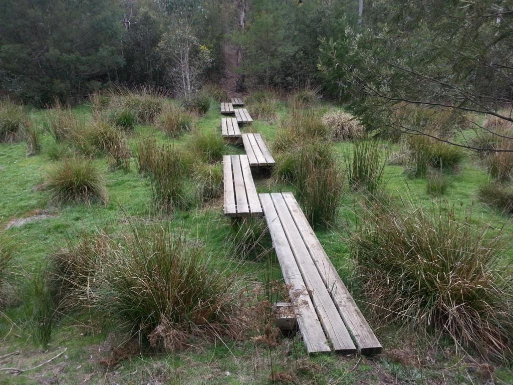 Burchell trail boardwalk